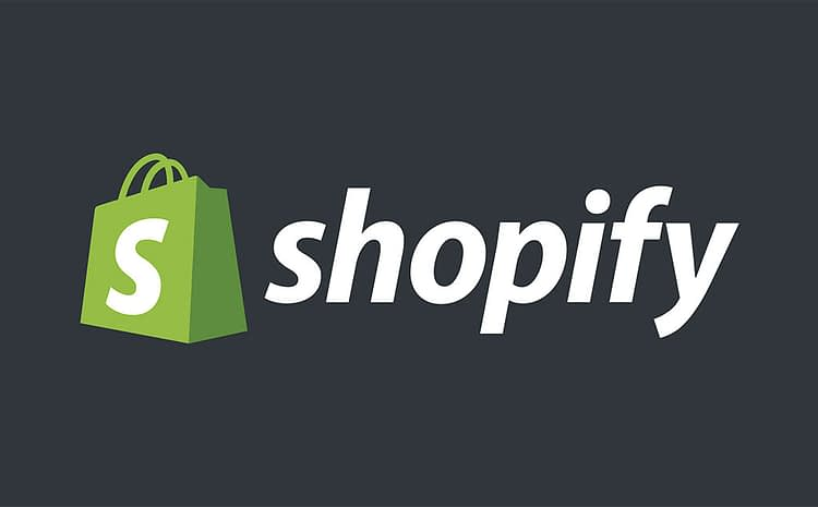 Top Dropshipping Shopify Stores